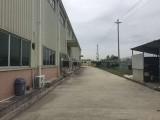 惠城区附近独院单层钢构厂房18000平方出租