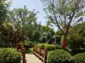 河北迁安湖景花苑 千米大湖景色迷人京东水城101m只需40万