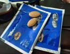 北海蓝牡蛎片多少钱//一盒多少粒//图片说明