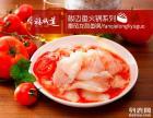 朴田泰式海鲜火锅加盟费多少