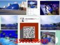 鲸鱼岛气模生产厂家熊猫气模大熊猫气模生产厂家白万海洋球熊猫
