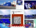 鲸鱼岛现货预定鲸鱼岛生产厂家低价出租出售鲸鱼岛乐园设备价格