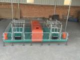 母豬產床 保育床 定位欄生產廠家養豬設備