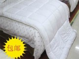 酒店宾馆 旅馆 床上用品 床品 批发 布草 床褥子 床垫 保护垫