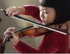 崇明区小黑喵钢琴电子琴小提琴大提琴家教教学