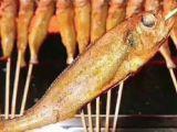 襄阳网红小黄鱼培训费用是多少