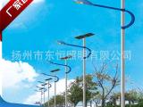 东恒道路照明路灯/单,双臂灯,太阳能灯,可做异形灯杆生产加工