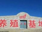 武功县写墙体大字,写墙体广告