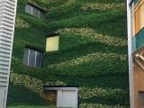 珠海楼盘垂直绿化 立体绿化 植物墙 绿植墙 主题花艺