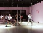 嘉兴哪里有钢管舞培训,嘉兴较好的钢管舞培训,嘉兴九域舞蹈培训
