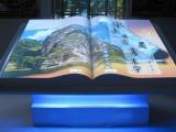 深圳多媒体互动数字展示,盛世文化科技提供一站式的多媒体互动数