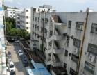 宝田5楼300平方带装修厂房出租