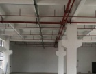 福永凤凰标准一楼1850平精装修厂房
