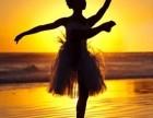北京桔子树丰台区西三环学少儿芭蕾艺术培训