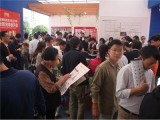 广州琶洲派单专业执行公司