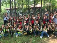 桔灯体验 舞林大会 主题青少年户外活动