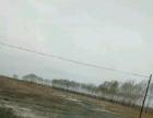 龙江 龙江县广后乡富景公路旁 土地 7000平米
