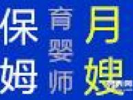 深圳月嫂 深圳育婴师 母婴护理 做天使的事业 做事业的天使