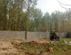 沙沟镇土地出租种植养殖 土地 1平米