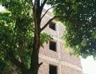 上蒜,开发区 自建房 800平米 亏本出售90万。