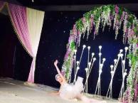 巴洛克艺术培训权威少儿芭蕾舞培训【二十年教学经验】