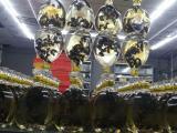 云南林城生物养蜂培训,爆款新品,价低质更高
