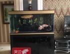 包邮透明热弯方形玻璃生态金鱼缸乌龟缸小型办公桌水族箱造景鱼缸