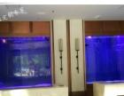 嘉兴鱼缸厂家别墅售楼中心主题公园 鱼缸 定做鱼缸 鲨鱼缸