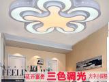 厂家供应LED吸顶灯新款铁艺异形吸顶灯现代简约客厅房间创意灯饰