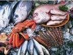 玉环厂家冷冻水产品(鲜虾)