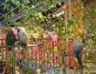 宁波羊驼出租马戏团出租海洋鱼缸海狮美人鱼表演鹦鹉百鸟展