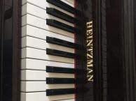 钢琴电子琴培训机构