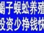 鑫农丰蜈蚣养殖加盟