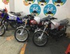 全新摩托车专卖:巧格 鬼火 迅鹰 街跑 拉客车 可分期带回家
