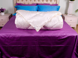 厂家批发酒店布草床上用品套件羽丝绒被 整张超细羽丝绒 羽丝绒被