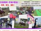 邯郸紫园户外田园烧烤,采摘,骑马,欢唱K歌夜!