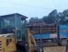 装载机昊特机械本人改行转让一辆甘蔗装载机