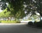 沙井大王山楼上带精装修1865平米厂房便宜出租