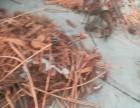 恩施常年高价回收各种废铜销子废电缆
