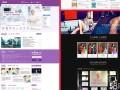 90后大学生网站制作+设计+优化,较低450元起
