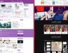 大学生工作室网站设计+制作+推广,保证百度收录