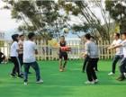 大鹏南澳DIY野炊-旗鼓飞扬-踩气球-趣味运动会一日游