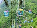 T香港游2天1晚海洋公园自由行纯玩经典游