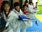 观音桥哪里有专业学习跆拳道的