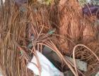 保定市涿州哪里有回收废铜电缆铝线黄铜变压器铅酸蓄电池电瓶电表