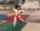 青少年武术 散打 心意六合拳资深教练传授