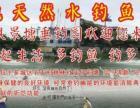 桃林村大池塘开放垂钓