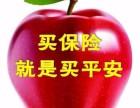 中国平安集团--车险 健康险 养老险 团体险 贷款 投资理财