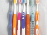 牙刷贴牌订做 定制logo礼品牙刷 活动
