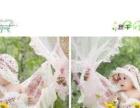 农安县淘之趣儿童摄影幼童专业艺术摄影、孕妈咪摄影